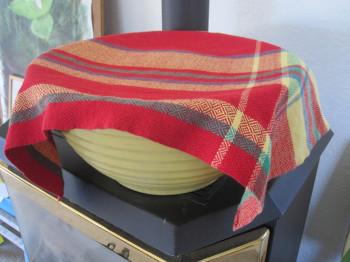 Deb's towel covering rising bread dough